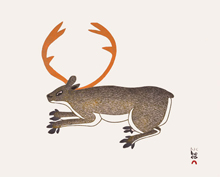 2014-cape-dorset-print-collection-19