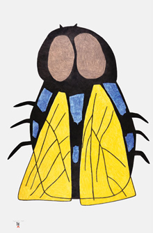 2014-cape-dorset-print-collection-29